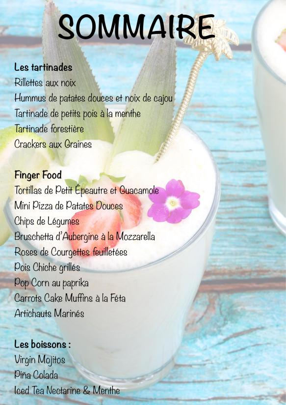 SOMMAIRE EBOOK-1